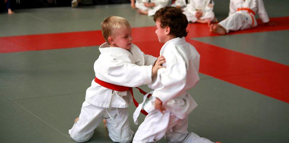 Vriendschappelijke judotornooitjes
